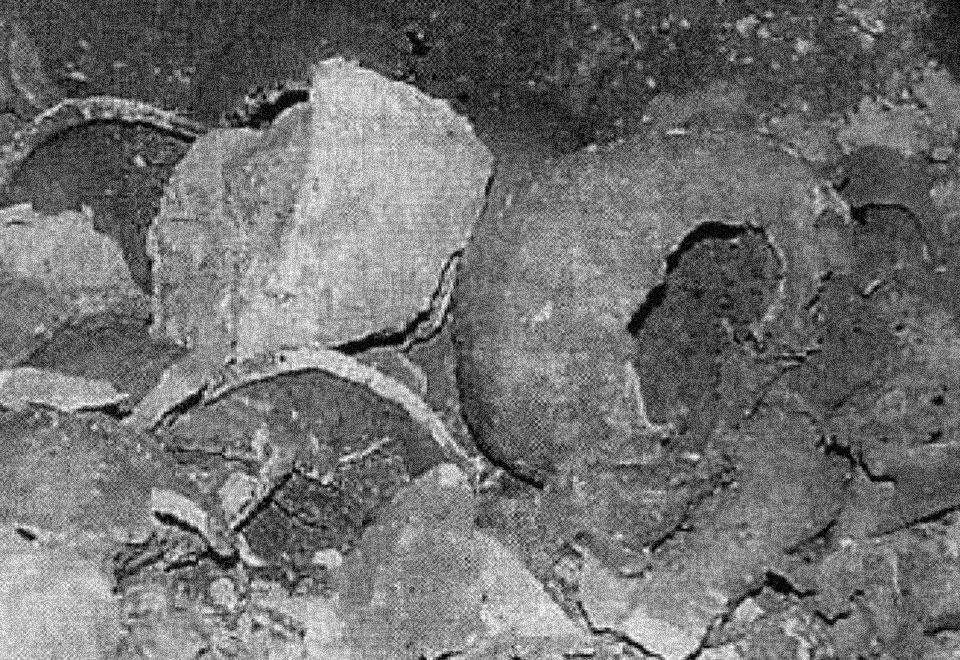 العثور على مقبرة جماعية في بلدة تول فيها جماجم وعظام قديمة العهد ومجهولة الأصل